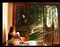 20120820093234-ventana.jpg